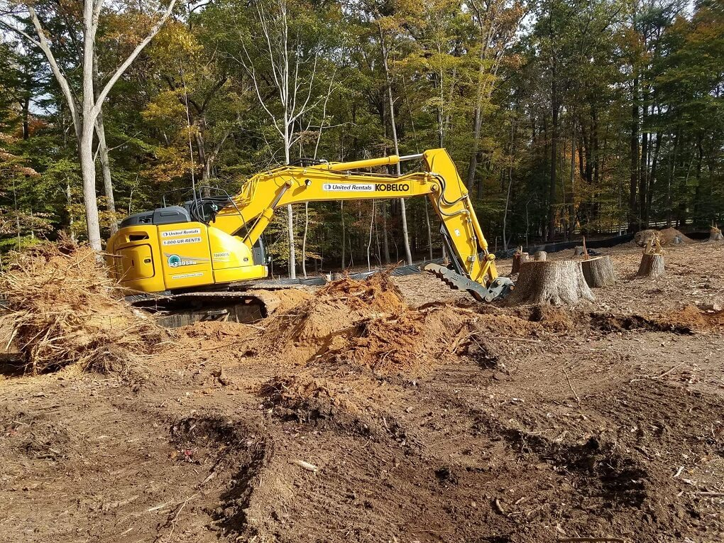 Land Clearing-Roanoke Tree Trimming and Stump Grinding Services-We Offer Tree Trimming Services, Tree Removal, Tree Pruning, Tree Cutting, Residential and Commercial Tree Trimming Services, Storm Damage, Emergency Tree Removal, Land Clearing, Tree Companies, Tree Care Service, Stump Grinding, and we're the Best Tree Trimming Company Near You Guaranteed!