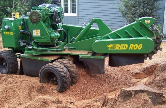 Stump-Grinding-Roanoke Tree Trimming and Stump Grinding Services-We Offer Tree Trimming Services, Tree Removal, Tree Pruning, Tree Cutting, Residential and Commercial Tree Trimming Services, Storm Damage, Emergency Tree Removal, Land Clearing, Tree Companies, Tree Care Service, Stump Grinding, and we're the Best Tree Trimming Company Near You Guaranteed!