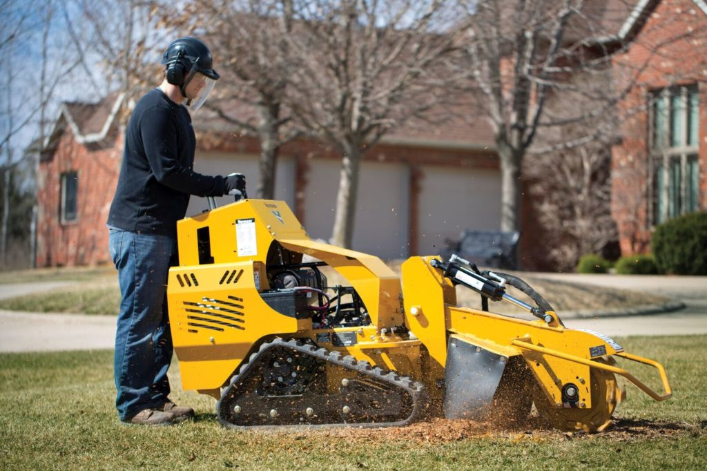 Cloverdale-Roanoke Tree Trimming and Stump Grinding Services-We Offer Tree Trimming Services, Tree Removal, Tree Pruning, Tree Cutting, Residential and Commercial Tree Trimming Services, Storm Damage, Emergency Tree Removal, Land Clearing, Tree Companies, Tree Care Service, Stump Grinding, and we're the Best Tree Trimming Company Near You Guaranteed!