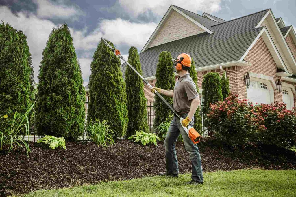Starkey-Roanoke Tree Trimming and Stump Grinding Services-We Offer Tree Trimming Services, Tree Removal, Tree Pruning, Tree Cutting, Residential and Commercial Tree Trimming Services, Storm Damage, Emergency Tree Removal, Land Clearing, Tree Companies, Tree Care Service, Stump Grinding, and we're the Best Tree Trimming Company Near You Guaranteed!